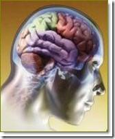 La forma en que alimentas tu mente es la clave para tomar buenas decisiones